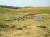 lacul-baia-vulturilor