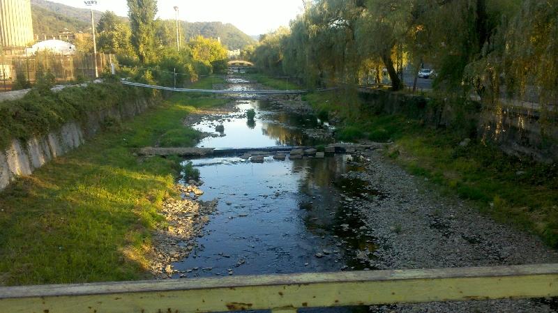 Barzava secata - Resita, septembrie 2012