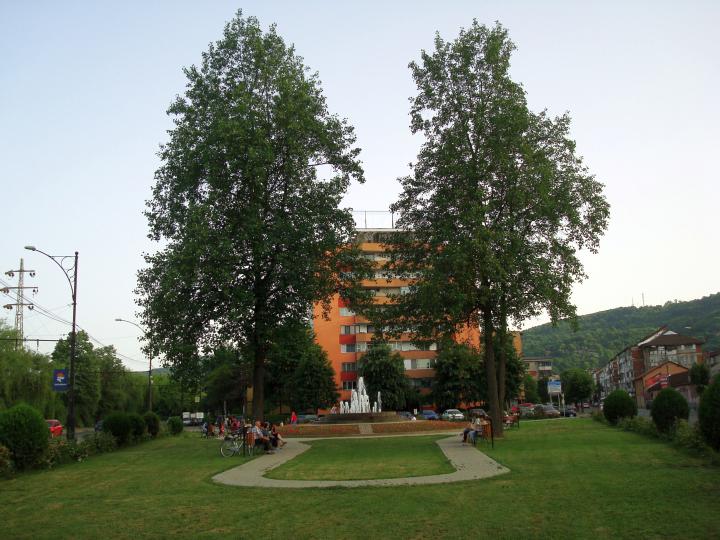 Parc cu arbori de lalea