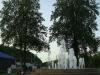 arborii-de-lalea-si-fantana-artezianai